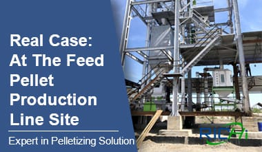 Feed Pellet Production Line On-site