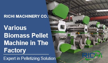 Biomass Pellet Machine in RICHI Workshop