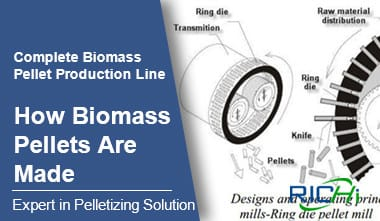 How Biomass Pellets Are Made