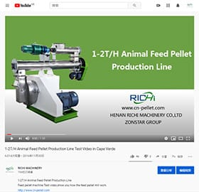 feed animal poultry line of pelletizer