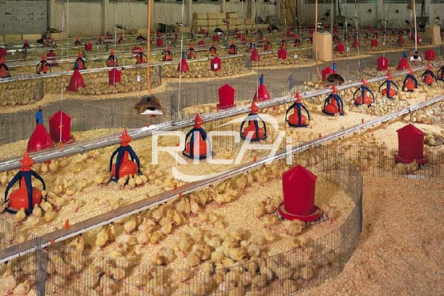 Price of setting up a poultry feed plant