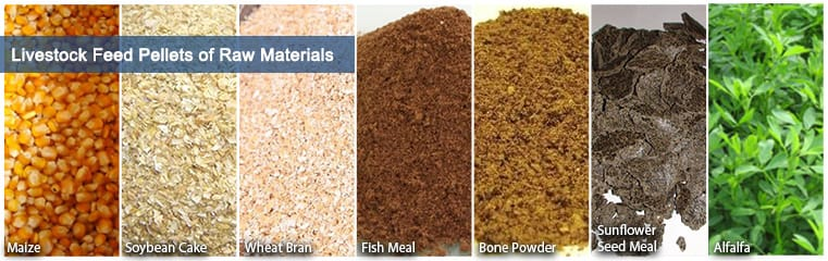 Feeding of raw materials in the animal feed plant production process