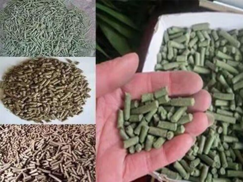 animal sheep cattle feed alfalfa pellet production plant