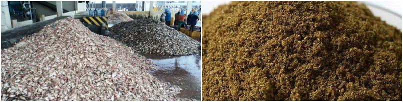 Why is fish meal the best feed material for the aquaculture industry?