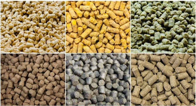 Simple method for removing aflatoxin in animal feed