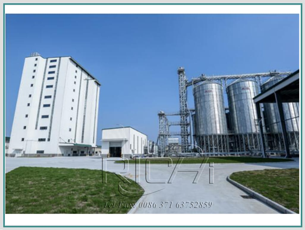 netherlands product line feed cattle feed