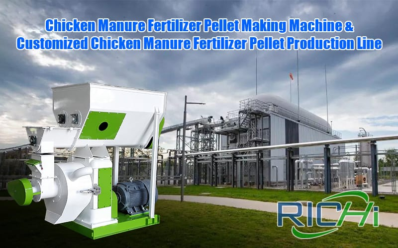 How to make chicken manure fertilizer